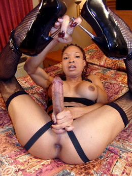 Dissolute black trannies in stockings..