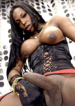 Another tranny cocks and nude ebony..