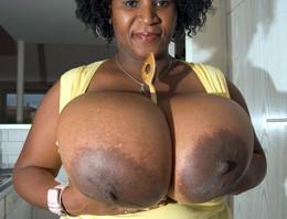 Cute black BBW housewife exposing her..
